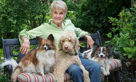 What to Do When Elderly People Can't Take Care of Their Pets
